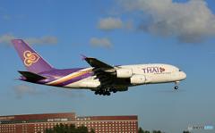 「青が大好き」 THAI A380-841 HS-TUE 通過