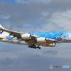 「晴れた」 Flying Honu A380-841[青] Landing