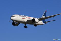 「青い日」AEROMXICO 787-8 N966AM  Landing