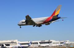 「良い空~」ASIANA A380-841 HL7626  着陸です