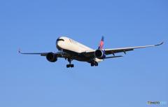 「あおぞら」DELTA A350-941 N503DN  到着です