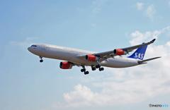 「令和」 SAS A340-313 OY-KBC 記念