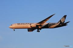 「蒼空」Air NZ' 787-9 ZK-NZC  到着です☀
