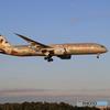 「晴れ」ETIHAD saudi 787-9 A6-BLN 到着した