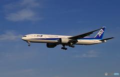 「青い日」ANA 777-381 JA780A  Landing