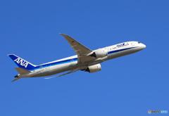 「真青の空」 ANA 787-9 JA837A 飛行