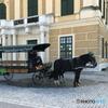 ウイーン(539) シェーンブルン宮殿前の「2馬力」