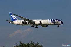 「曇り」Star Wars 787-8 JA873A 到着します