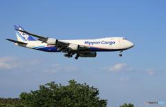 「COOL」NCA 747-8KZF JA12KZ  着陸します