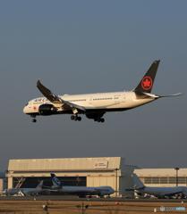「青い日」 AIR CANADA 787-9 C-FRTN Landing