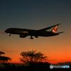 「空色」 シルエットJapan Airlines787-9