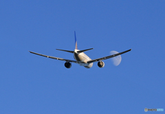 「すかい」 UNITED 「767と月」 Takeoff