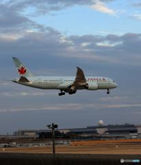 「青い日」 Air Canada 787-8 C-GHPX Landing