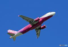 「すかい」 Peach A320-214 JA808P 出発