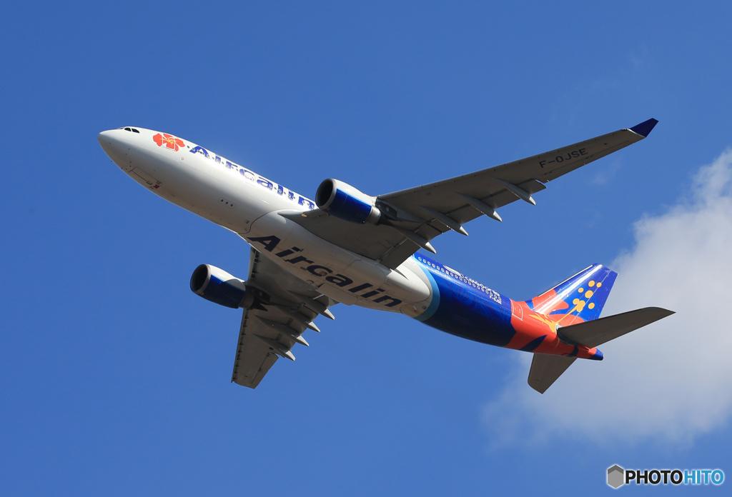 「あおぞら」Air Calin A330-202 F-OJSE飛ぶ