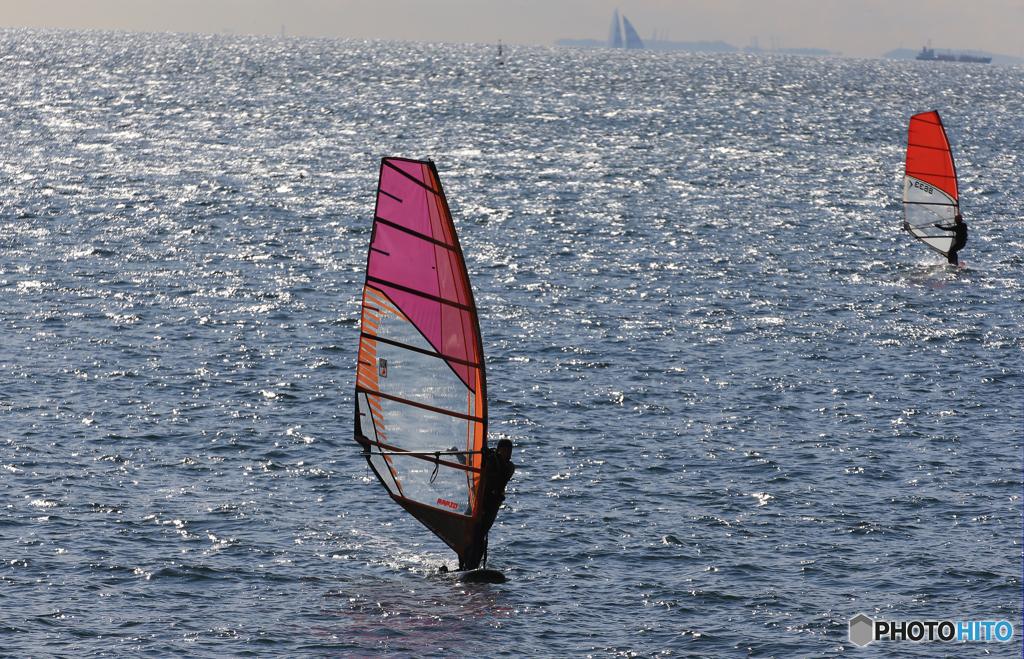 ☀ ウインド・サーフィンを観る ☀