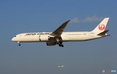 「青い日」 JAL 787-9 JA876J Landing