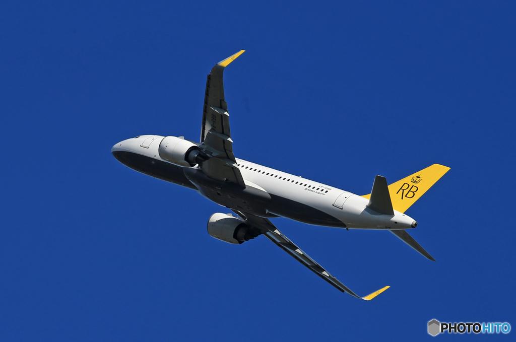 「青色が好き」ロイヤルブルネイ A320-251N V8-RBB 飛ぶ