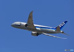 「青色が好き」 ANA 787-9 JA875A  Takeoff