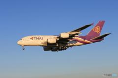 「スカイ」Thai A380-841 HS-TUB    Landing