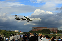 ☀「青い空」が一番 Air NZ' 787-9 ZK-NZC