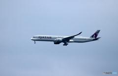 「くもり」QATAR A350-941 着陸