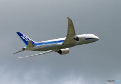 ☀「青い空」が一番 ANA 787-8 JA827A 飛ぶ