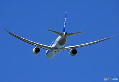 「群青」 ANA 787-9 JA871A Takeoff