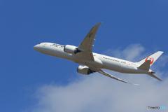 「青色が好き」JAL 787-9  JA870J  Takeoff
