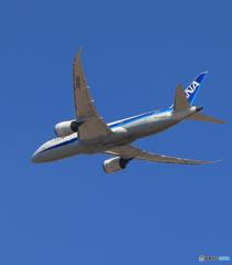 「あおいそら」 ANA 787-8 JA828A Takeoff