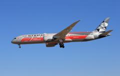 「青い空」が一番 ETIHAD 787-9 着陸