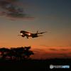 「青い日」 ☮ シルエット・カンタス航空 ☮