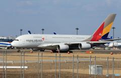 「群青」 Asiana A380-841 HL7625 出発です