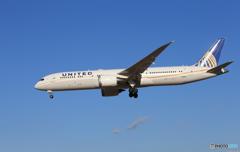 「青い日」 UNITED 787-9 N19951 着陸
