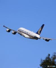 ☀「青い空」が一番Singapore A380-841
