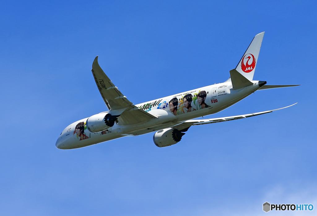「晴れ」JAL B787-9  特別塗装 JA873J 離陸です