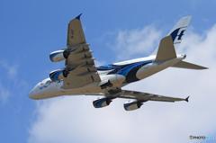「青い日」 malaysia A380-841 9M-MNF Takeoff