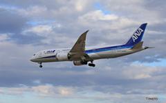 「青の空」ANA 787-8 JA805A 到着