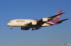 「群青色」 THAI A380-841 HS-TUD Landing