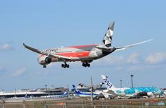 「スカイ」ETIHAD F-1 787-9 A6-BLV  Landing