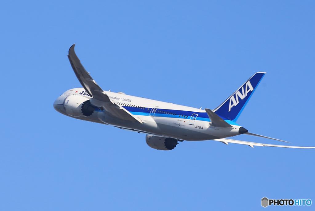 「青が大好き」ANA 787-8 JA803A 出発です