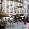 プラハ(471)馬車を追い掛けて・街を歩く