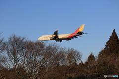 「蒼空」ASIANA 747-400 HL7417 ☀ 到着です