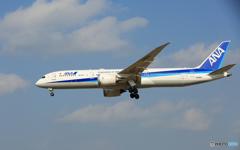 「青い日」 ANA 787-9 JA892A Landing