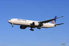 「晴れ」  UNITED 777 到着しました