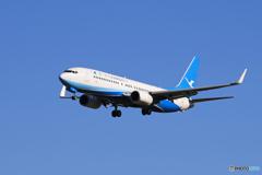 「青い日」アモイ 737-800 B-1708 Landing
