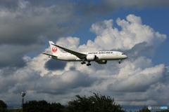 「晴れ」 JAL 787-8 JA836J  Landing
