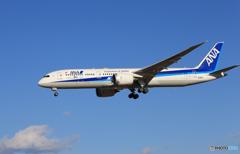 「ぶるー」 ANA 787-9 JA882A [ 50 ]通過