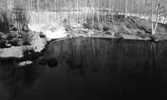ホテルの池