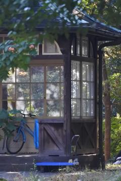 旧古河庭園~裏庭